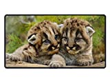 Animal Cougar Cats Baby Cub Extra Large Gaming Mouse Mat Non-Slip Rubber Base Sticthed Edge Mousepad for Computer Desk Stationery Accessories 15.5 x 29.5 inch