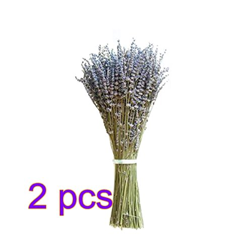 Pitcher Bud Vase - ADSRO Artificial Lavender Bouquet, Natural Dried Fake Bouquet for Photographic Props Household Garden Foam Table Desk Decor and Wedding Decoration Events size 2Pack