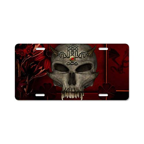 AhuiA-Awesome Skull with Celtic Custom Personalized Aluminum Metal Novelty License Plate Cover Front Auto Car Accessories Vanity Tag- 6x12 -