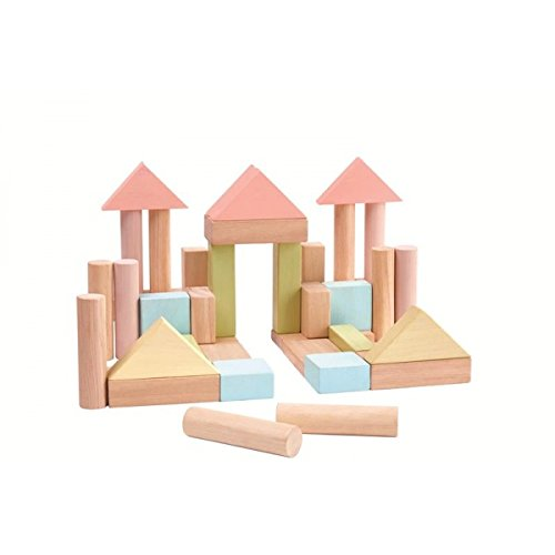 - PlanToys 40 Unit Blocks
