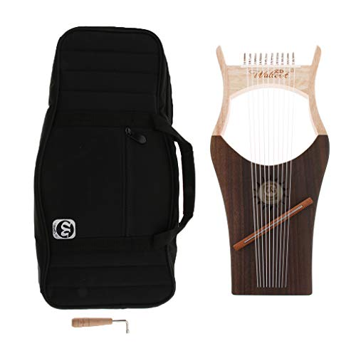 B Blesiya Musically 10 String Harp Kit with Tuner & Carrying Case Mahogany Body Rosewood Fingerboard by B Blesiya