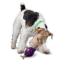PetSafe Premier Twist and Treat Dog Toy, Medium