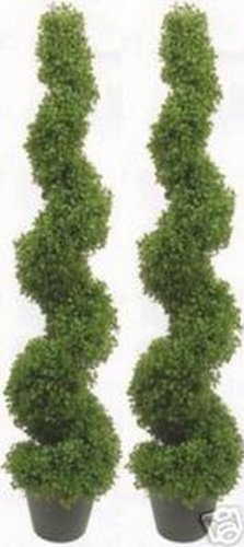 Two 5 Foot 3 Inch Artificial Boxwood Spiral Topiary Trees Potted Indoor or Outdoor by Silk Tree Warehouse