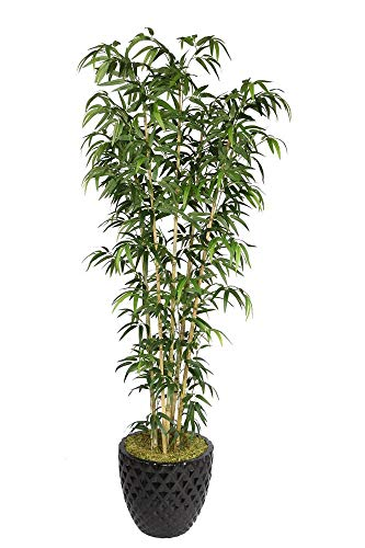 Bamboo Tabletop Silk Tree - Laura Ashley VHX116205 78-Inch Natural Bamboo Tree in 16-Inch Fiber Stone Planter
