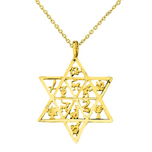 (14k Yellow Gold Textured Star of David Charm with 12 Tribes of Israel Pendant Necklace, 16