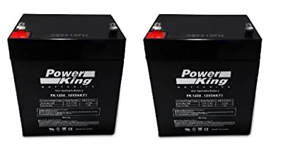Pulse Charger Scooter Replacement Batteries Beiter DC Power®