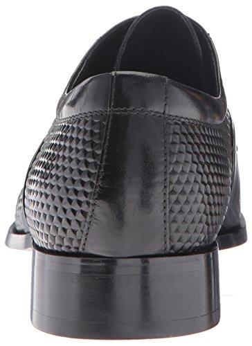 Kallan Oxford Plain Men's Black Adams Toe Stacy Lace qE78gFwB