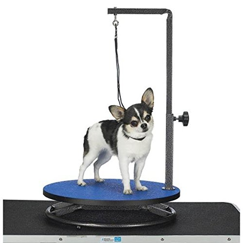 Master Equipment Small Pet Grooming Table, Blue - Square Extending Table