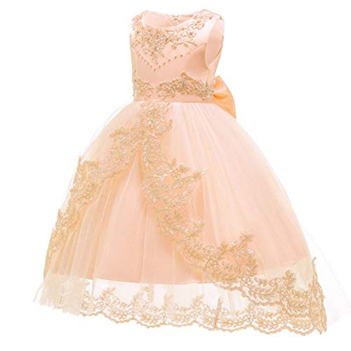Kids Princess Dresses for Girls Clothing Flower Party Girls Dress Elegant Wedding Dress for Girl Clothes 3 4 6 8 10 12 14 Years,Champagne1,14