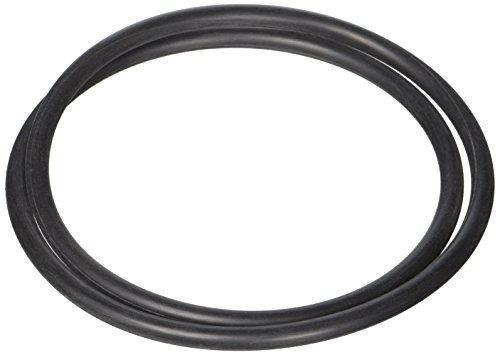 Hayward SPX4000T Seal Plate O-ring Replacement for Hayward Northstar Pump