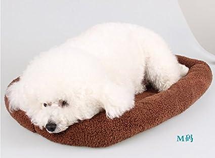 Amazon com : KAI Creative Dog Mat Dog Bed Cat Bed?7250cm Brown : Pet