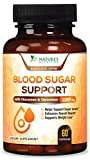 Blood Sugar Support Supplement Extra Strength 2000mg - Multivitamin for Natural Blood Sugar Control with Cinnamon, Alpha Lipoic Acid, Chromium & Bitter Melon Extract. Natures Nutrition - 60 Capsules