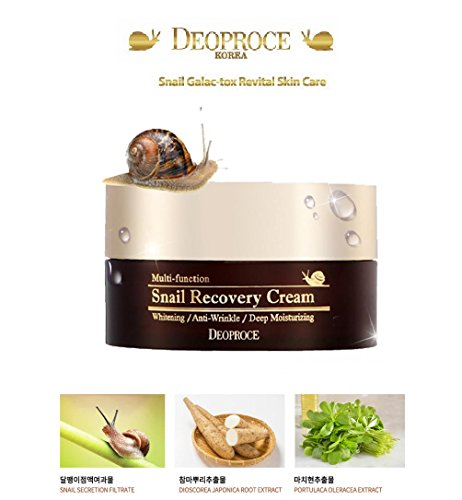Korean Cosmetics Deoproce Snail Recovery Cream reduces wrinkle, protects against aging, sun damage, elasticity