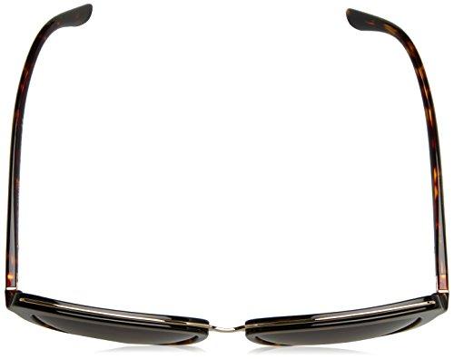 Dolce Gabbana havana Marron Sonnenbrille amp; dg4304 browngradient BrfxB8