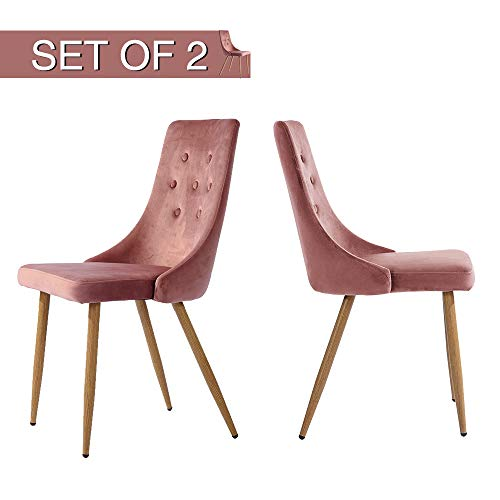 Accents Leisure - GreenForest Velvet Dining Chairs Set of 2 Mid-Century Modern Kitchen Chairs High Back Upholstered Leisure Accent Side Chairs for Living Room, Rose