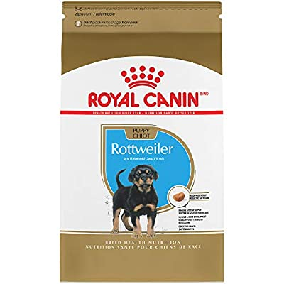 Royal Canin Breed Health Nutrition Rottweiler Puppy Dry Food