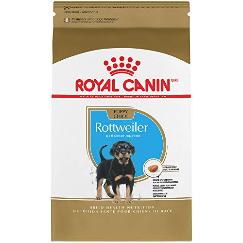 (Royal Canin Breed Health Nutrition Rottweiler Puppy Dry Dog Food, 30-Pound)