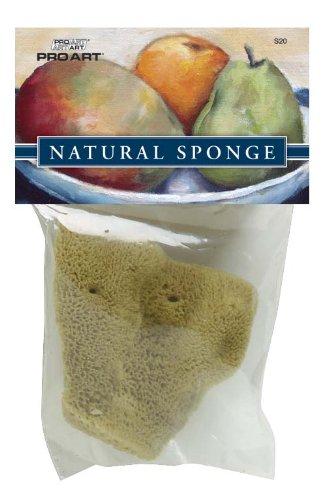 S20 PRO ART Large Elephant Ear Sponge