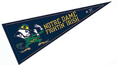 """WinCraft NCAA Notre Dame WCR37267671 Carded Classic Pennant, 12"""" x 30"""""""