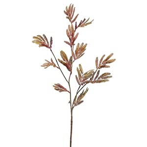 "SilksAreForever 35"" Silk Mimosa Stem -Burgundy/Gold (Pack of 12) 29"