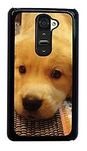 Golden Retriever Dog Hard Case for LG Optimus G2 D800/D801