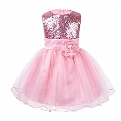 iiniim Baby Girls Sequins Formal Wedding Pageant Birthday Tutu Princess Party Flower Girl Dress