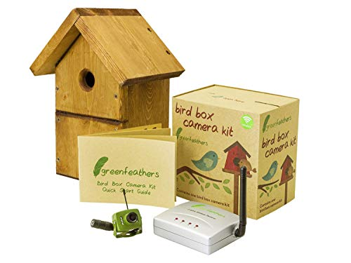 Green Feathers Wildlife Bird Box Wireless SD 700TVL Video Camera With Complete DIY Timber Chalet Style Bird Nest House…