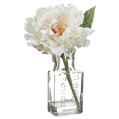 Cream Polysilk Peony Floral in Glass Vase - - Artificial Glasses