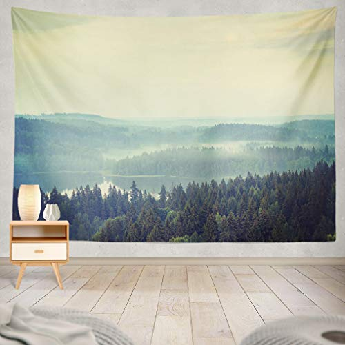 ASOCO Tapestry Wall Handing an Amazing Scenery of Thick Forest in Finland Image Taken in The Summer Time Wall Tapestry for Bedroom Living Room Tablecloth Dorm 60X80 Inches ()
