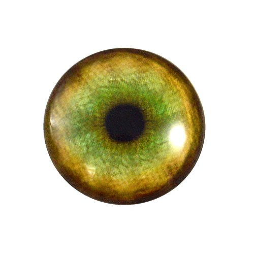 (25mm Single Tiger Glass Eye for Taxidermy Sculptures or Jewelry Making Pendants Crafts Art Doll Wire Wrapping DIY Flatback Cabochon)