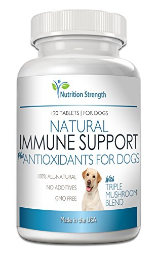 Nutrition Strength Immune Support for Dogs Plus Antioxidant, Reishi, Shiitake, Maitake, Turkey Tail Mushrooms for Dogs, with CoQ10, Natural Support for Cancer in Dogs, 120 Chewable Tablets