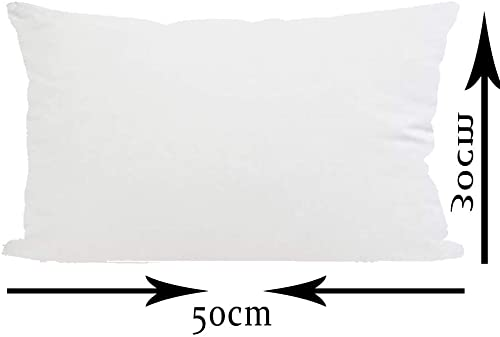 ITFRO Decorative Throw Pillow Insert Filler Stuffing Stuffer for Sofa Chair Bedroom Rectangle 12×20 Inches