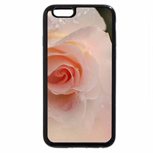 iPhone 6S / iPhone 6 Case (Black) Dreamy Rose