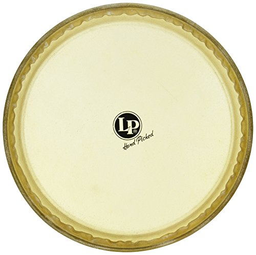 Latin Percussion LP265A 11-Inch Rawhide Quinto Head