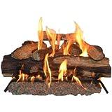 Sure Heat SH24DBNG Sure Heat Seasoned Hickory Dual Burner Vented Gas Log Set, 24-Inch, Natural Gas
