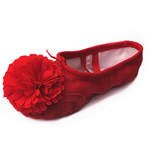 Yoga with Gymnastics Shoes ZEVONDA Red Ballet Dance and Soft Flats Women's Shoes Girls Flower Canvas Flats qOTq1vp