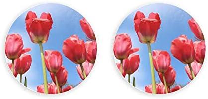 Flores tulipanes primavera planta floral rojo naturaleza imanes decorativos 2 piezas imán abridor de botellas nevera abridor de botellas de metal