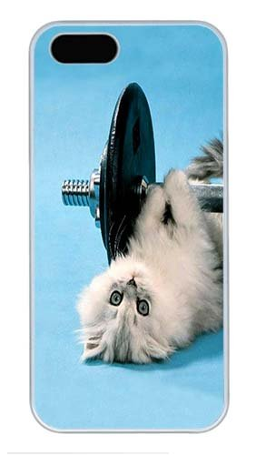 iPhone 5 Case 5S Case,Custom Design funny kitten lifting weights Hard Plastic PC White Case Personalized Bumper Cover for iPhone 5/5S (Weight Lifting Stuffed Animal)