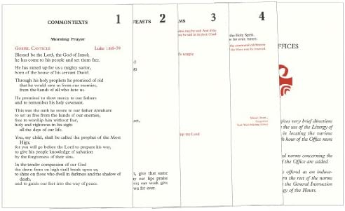 picture relating to Printable Liturgy of the Hours Guide named Liturgy of the Hrs Inserts: Catholic E-book Posting Co