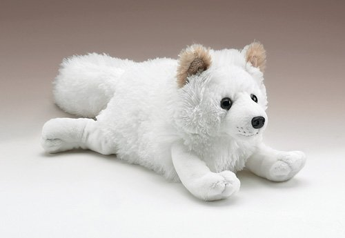 Arctic Fox 12