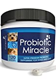 Image of NUSENTIA Probiotics for Cats & Dogs - (120 Scoops) Probiotic Miracle - Advanced Formula to Stop Diarrhea, Loose Stool, and Yeast.