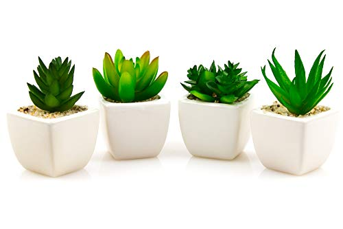 Realistic Artificial Succulent Plants For Home & Office Décor | Decorative Assorted Fake Potted Succulents | Faux Aloe & Cactus With Pots | Add A Fresh Look To Bedroom, Living Room & Bathroom | 4-Pack (Flowers To Faux Buy Best Place)