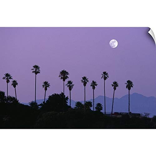 CANVAS ON DEMAND Wall Peel Wall Art Print Entitled Moon Over Palm Trees at Dusk, Hollywood, Los Angeles, California, USA 18