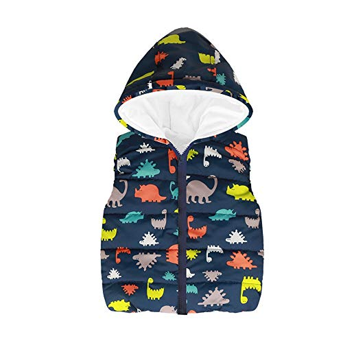 XoiuSyi,Toddler Kids Baby Grils Boys Sleeveless Animal Print Strip Rainbow Hooded Warm Waistcoat Tops -