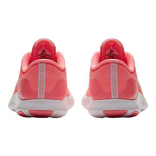 Nike Womens Flex Kontakt Løpesko Solnedgang Puls Arktisk Slag Wht