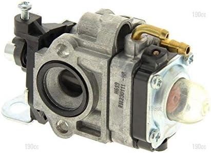 Mac Allister 1230540251 - Carburador desbrozadora: Amazon.es: Jardín