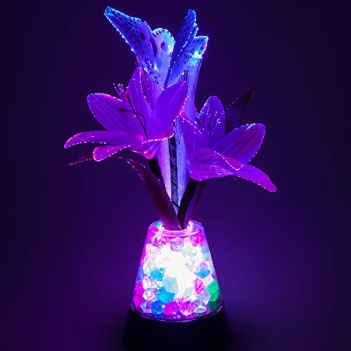 Fiber Optic Lamp - 3AAA Battery Or UBS for Fiber Optic Light, Fiber Optic Light with Iridescent Gemstone Changes, Touch Switch, Control 4 Kinds of Rainbow Illumination (Lily Fiber Optic)