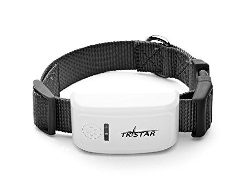 TKSTAR Real-time PET CAT DOG tracking locator GPS/GSM/WiFi Location Waterproof Mini Personal GPS Tracker with Free App
