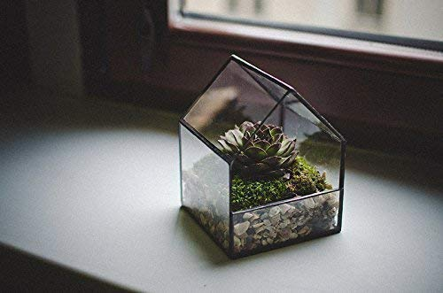 Glass Terrarium Small House Decoration Home Decor Planter for indoor gardening Succulent house Christmas New Year gift