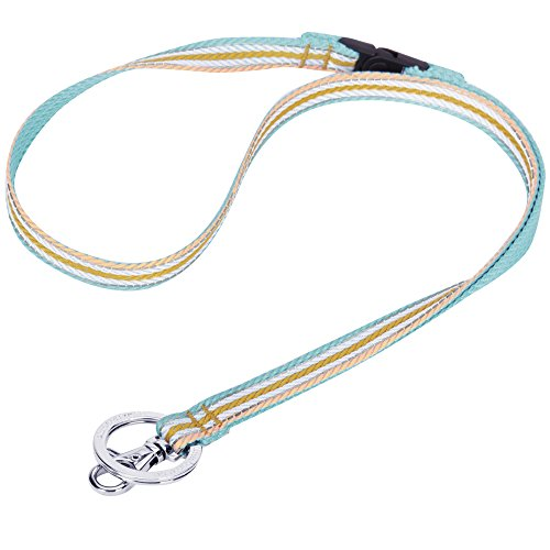 Blueberry Pet 3M Reflective Multi-Colored Stripe Pastel Blue and Beige Men Women Fashion Non Breakaway Lanyard Keychain for Keys/ID Card/Badge Holder, 1/2 Wide